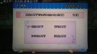 DSC_6354.JPG