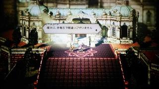 DSC_6732.JPG